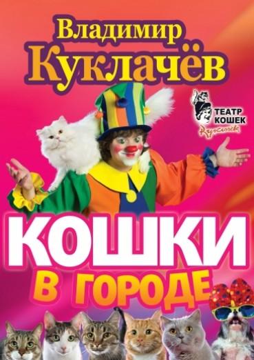 koncert-teatra-v-kuklachyova-koshki-v-gorode