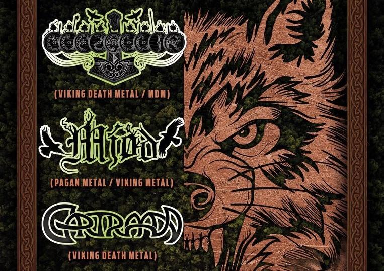 Viking Metal-party