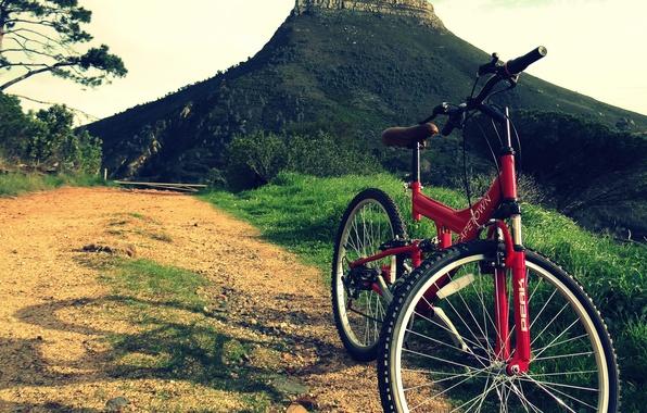Велопикник с VeloPOWER