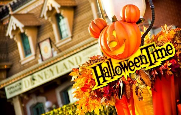 Halloween в отеле Hilton