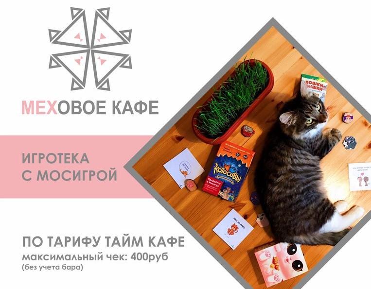 Игротека с котиками