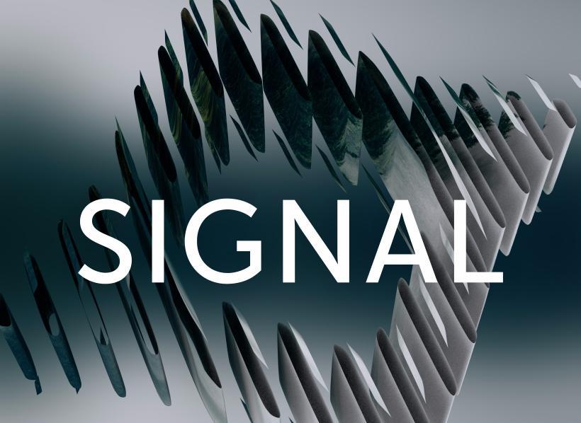 Фестиваль Signal 2017