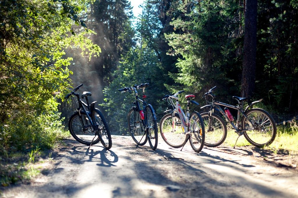 Велозаезд с torox