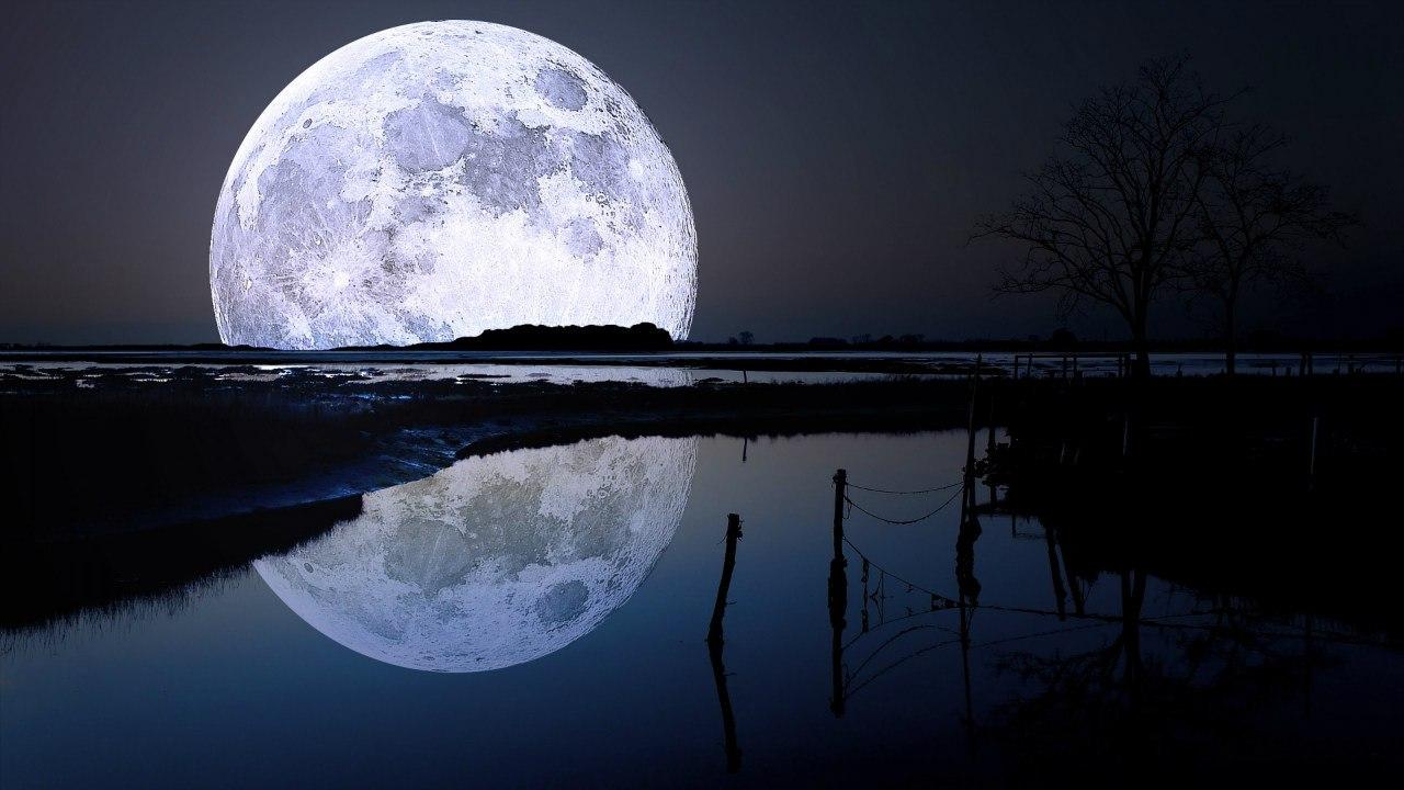 back Луны