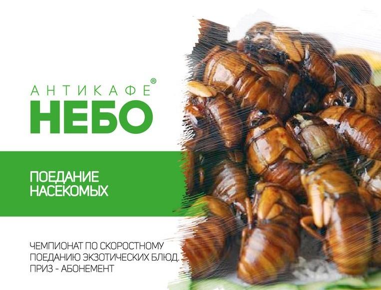 Турнир по поеданию насекомвых
