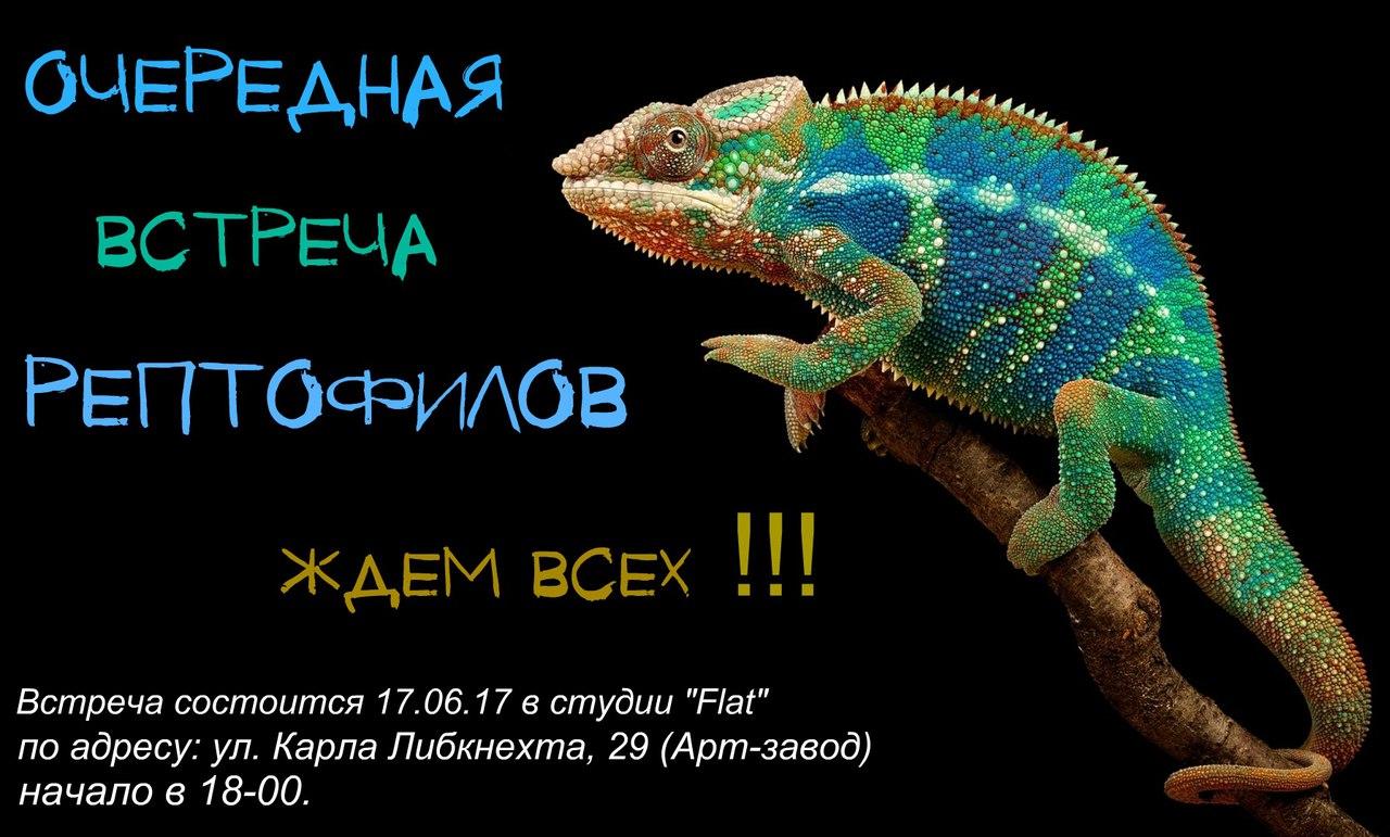 Встреча рептофилов - Эkzo_Калуга