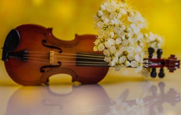 Вечер Итальянской музыки